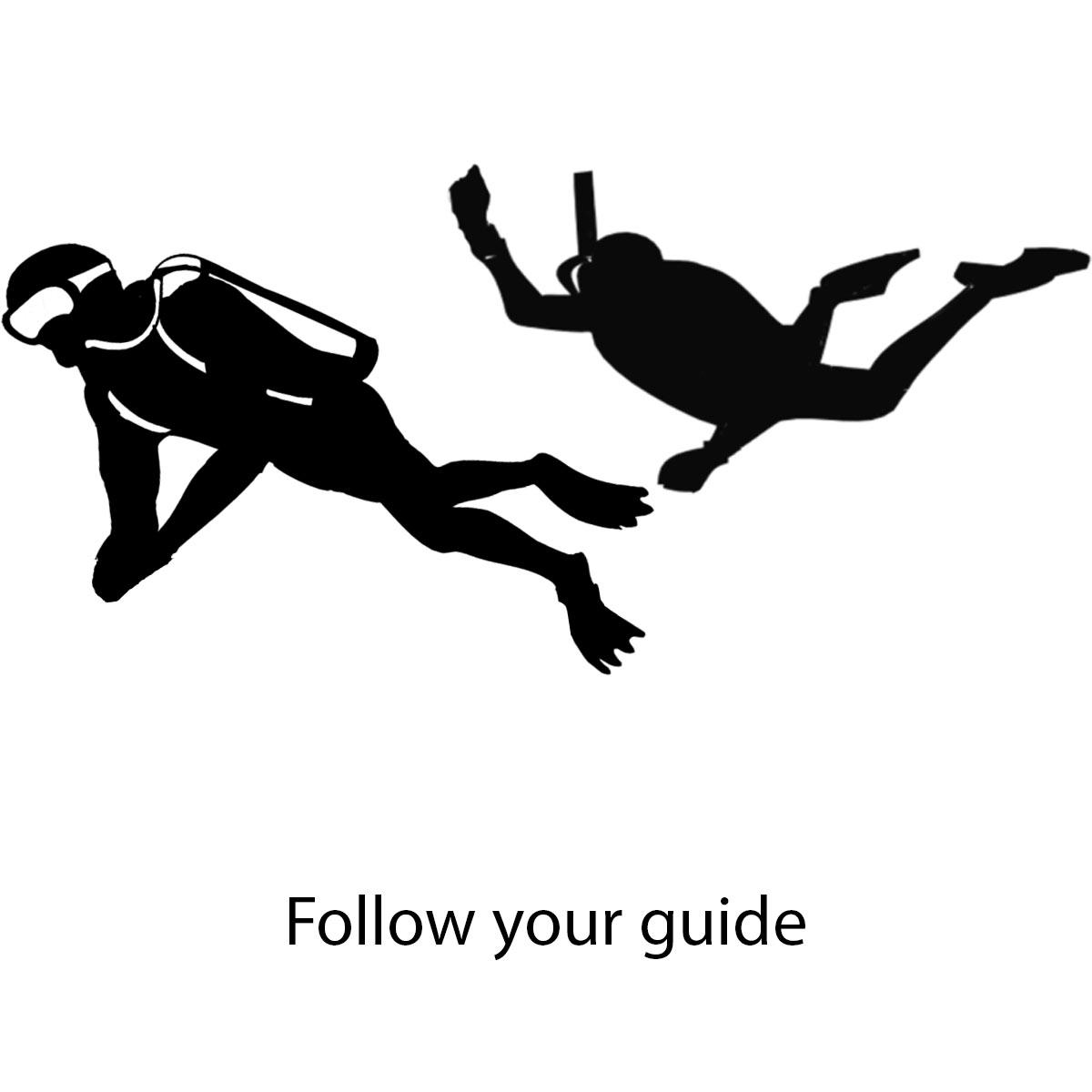 follow-your-guide.jpg
