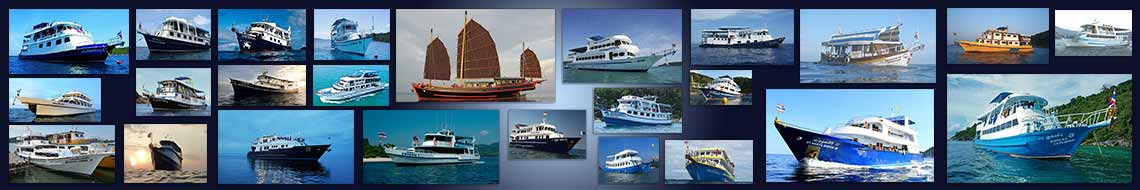 choosing-the-best-liveaboard-banner