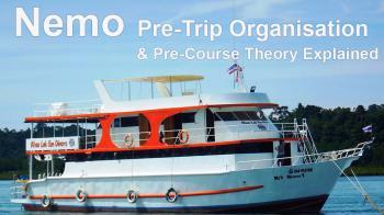 nemo pre organisation and theory intro
