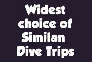 widest-choice-of-similan-dive-boats