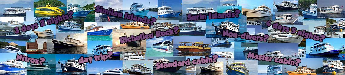 why-choose-Similan-diving-tours